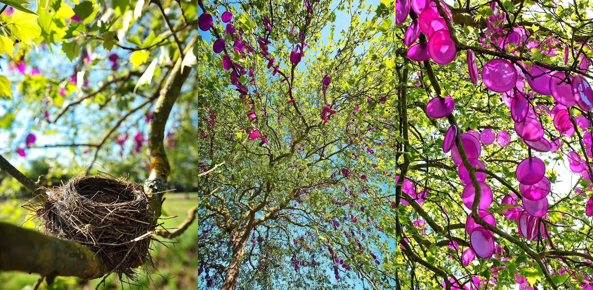 julien_cresp_gardens