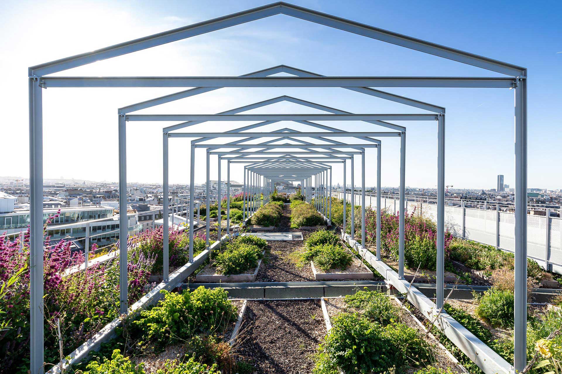 Paris : Hidden gardens